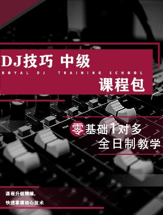DJ技巧中级课程包