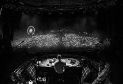 最新荷兰电音现场DJ视频专辑